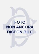 Bruno Murgia su inpolitix